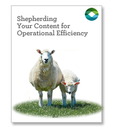 Graphic - Shepherding Your Content for Operational Efficiency